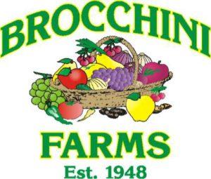brocchinilogo